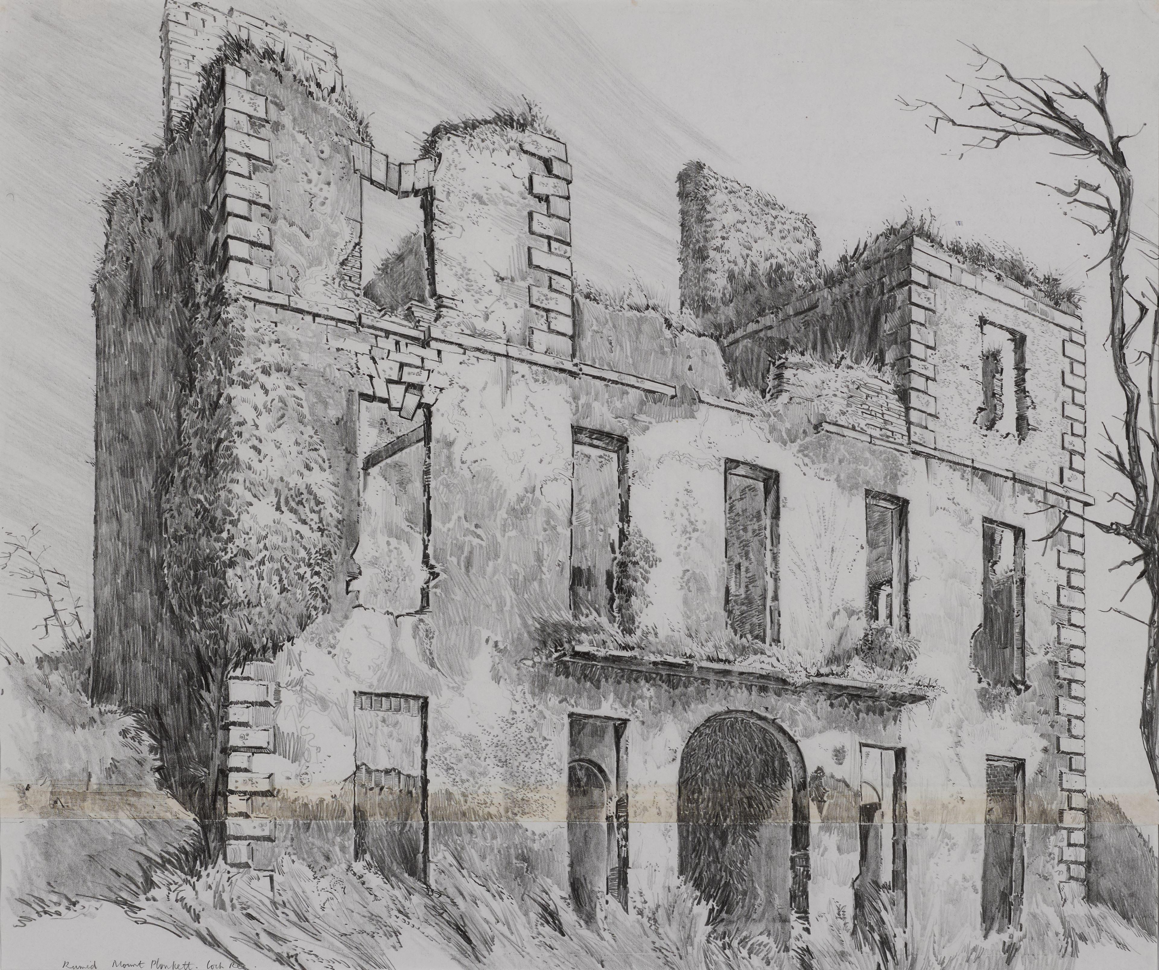 Mount-Plunkett-Co.-Roscommon-view-1.jpg#asset:11642